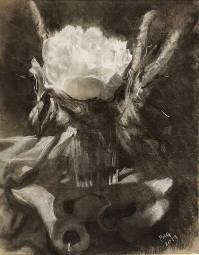 Pat Gericke, 'Cubanellas Caught in Shadow of Peony', 2019