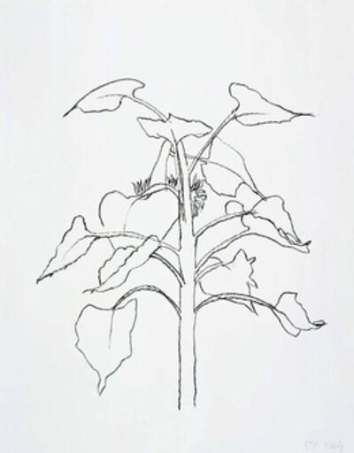 Ellsworth Kelly, 'Sunflower I', 2004
