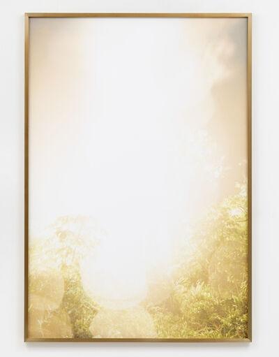 Julius von Bismarck, 'Talking to Thunder (Bright Tree)', 2017