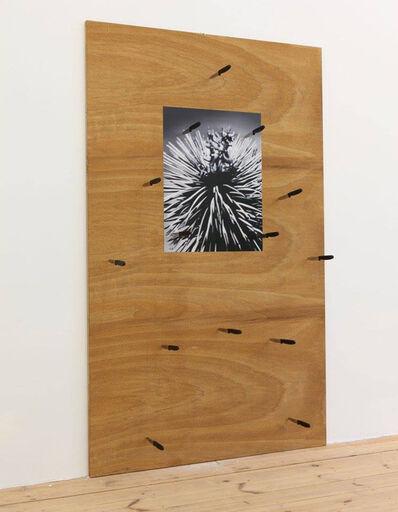 Thorsten Kirchhoff, 'Questione spinosa', 2018