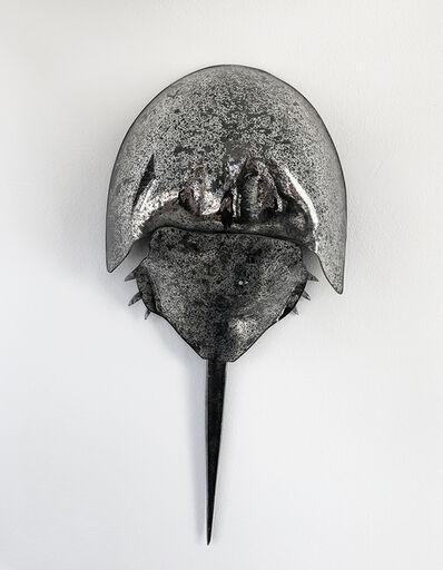 Carmen Spera, 'HORSESHOE CRAB', 2019