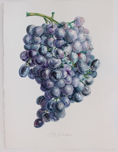 Don Nice, 'Grapes', 2014