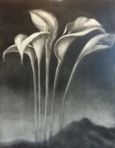Helen Stanley, 'Lilies', 2011