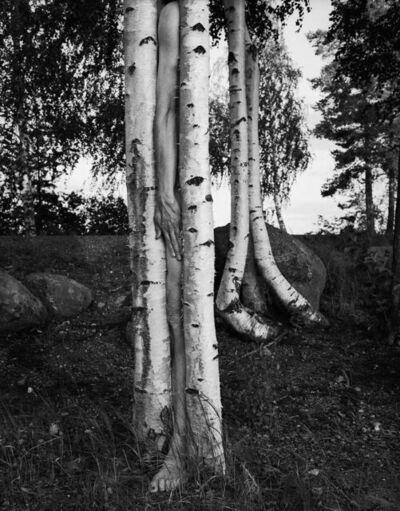 Arno Rafael Minkkinen, 'Väisälänsaari, Finland', 1998