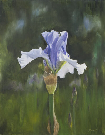 Nicola Currie, 'Spetchley Blue Iris', 2019