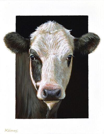 Alexandra Klimas, 'Tess a Yearling Calf'