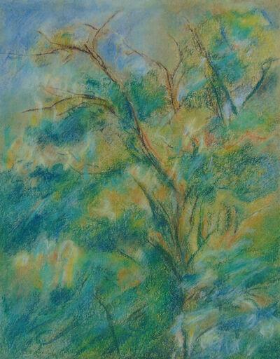 Max Liebermann, 'Study of a Tree Canopy | Studie einen Baumkrone', 1928