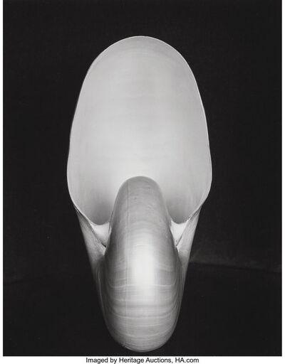 Edward Weston, 'Shell', 1927