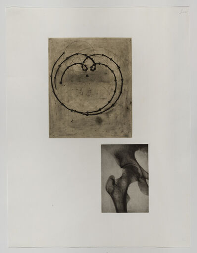 Terry Winters, 'Fourteen Etchings (portfolio)', 1989