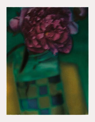 Sarah Moon, 'La pivoine 1', 2000