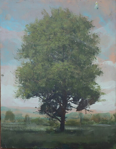 Peter Hoffer, 'White Oak', 2020