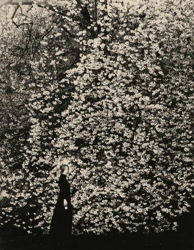 Yamamoto Masao, 'Untitled #1641', 2015