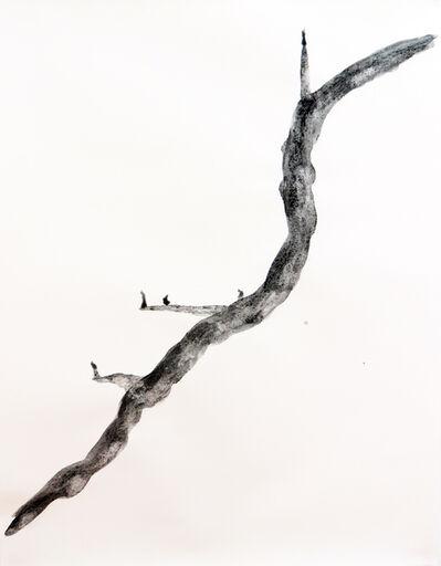 Yazid Oulab, 'Stylites #2', 2014