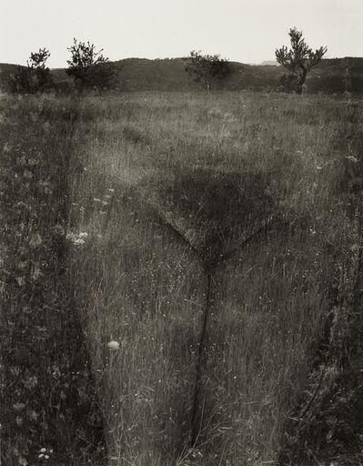 Harry Callahan, 'Eleanor, Aix-en-Provence, France', 1958-printed later