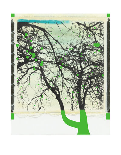 Niesforny, 'Trees with green apples', 2019