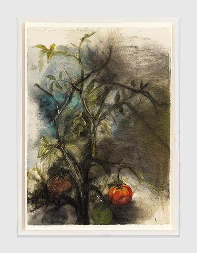 Jim Dine, 'Tomato Plant in October #2', 1993