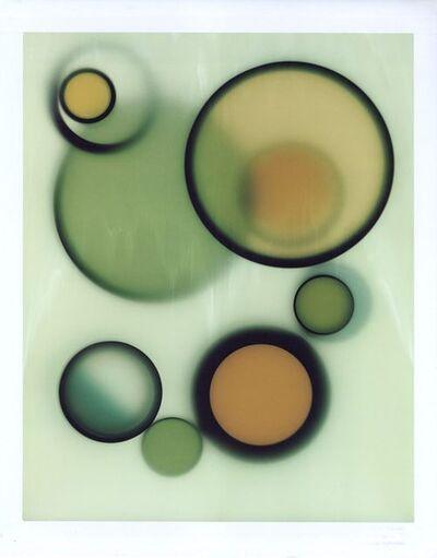 Brian Buckley, 'Animal in Green III', 2005