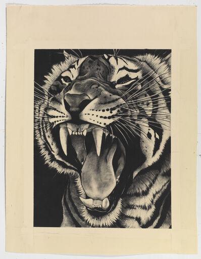 Rose Corcoran, 'Snarling Tiger on Black'