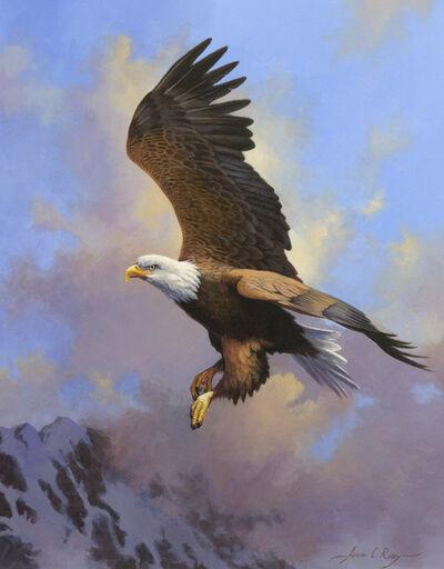 Adrian C. Rigby, 'Untitled - Bald Eagle'