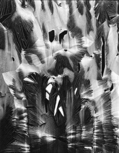 Brett Weston, 'Cracked Paint, Garrapata', 1952