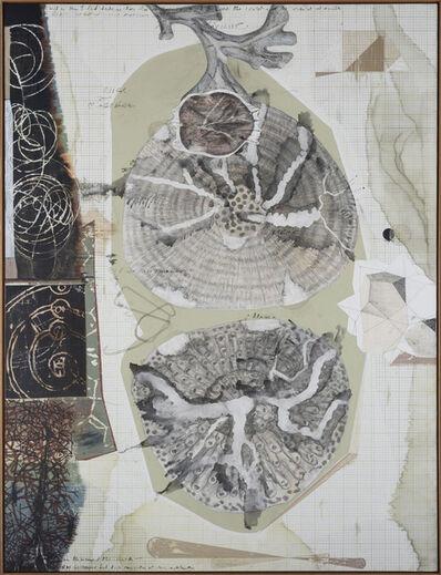 Jitish Kallat, 'Palindrome/Anagram Painting', 2019
