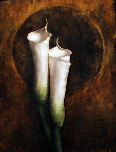 Maggie Hasbrouck, 'Calla Lillies'