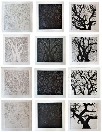 Nate Cassie, 'Four Trees-Texas', 2011