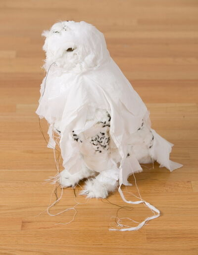 Kathryn Spence, 'Untitled (Snowy Owl)', 2006