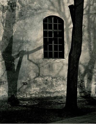 Roman Loranc, 'Shadow Play', 2008