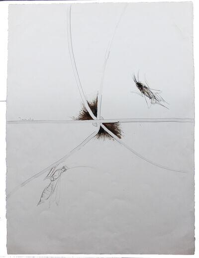 Francisco Toledo, 'Dos flores con insectos', 1991
