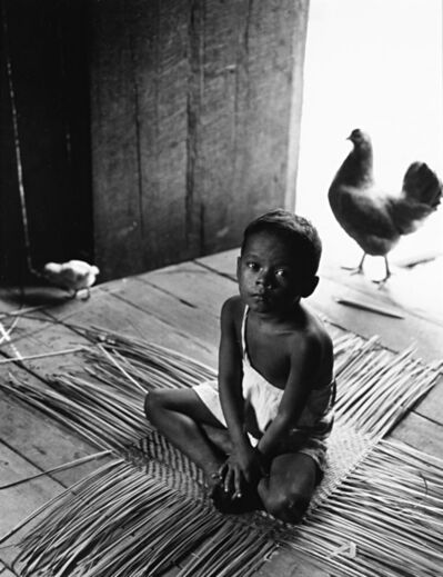 Fulvio Roiter, 'Amazonas - Brasil', 1957