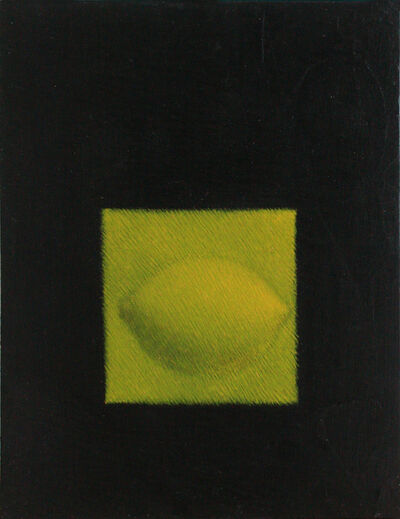 Zahoor ul Akhlaq, 'Untitled, from the Still Life series', 1995