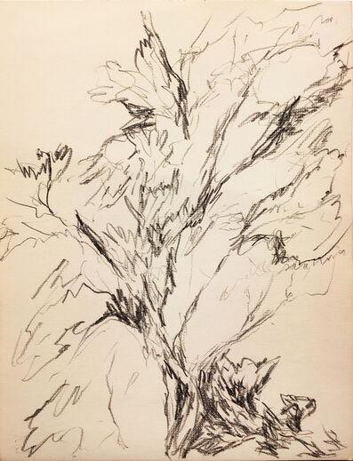 Myron Stout, 'Untitled', 1953