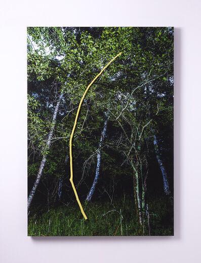 Yasuo Kiyonaga, 'REAL_05', 2020