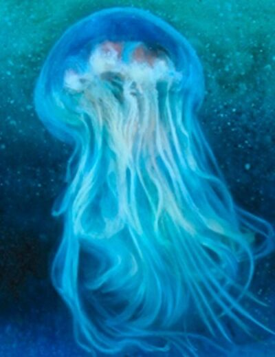 Victoria Moore, 'Jellyfish Series 2 D', 2007