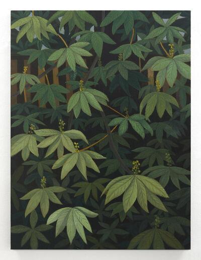 Stephen Mckenna, 'Horse Chestnut Leaves ', 2012