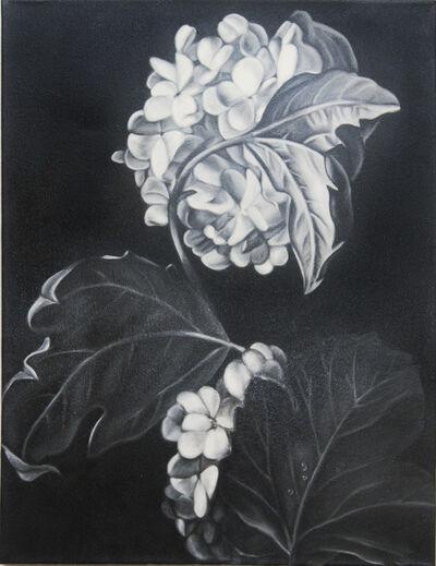 Shelley Reed, 'Hydrangea (after Rachel Ruysch)', 2010