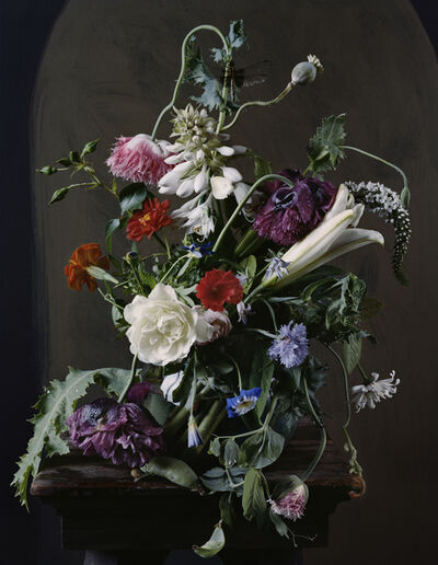 Sharon Core, '1720, from the series 1606-1907', 2012