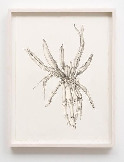 Aurel Schmidt, 'Untitled (Skeleton Lily)', 2014