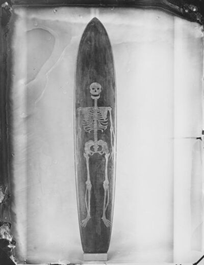 Joni Sternbach, '19.02.11 #5 Skeleton Board', 2019