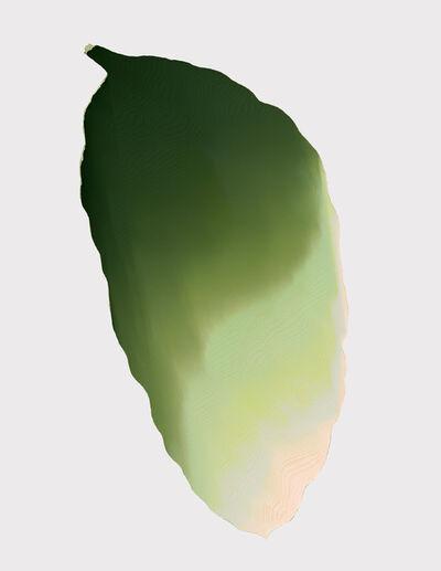 Andrea Wolf, 'Musa Acuminata Tropicana, var. 018', 2020