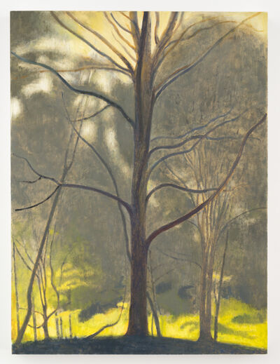 Ron Milewicz, 'Tree', 2017