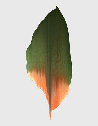 Andrea Wolf, 'Calathea Regalis, var. 036', 2020
