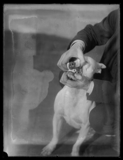 William van der Weyde, 'Dog Training'