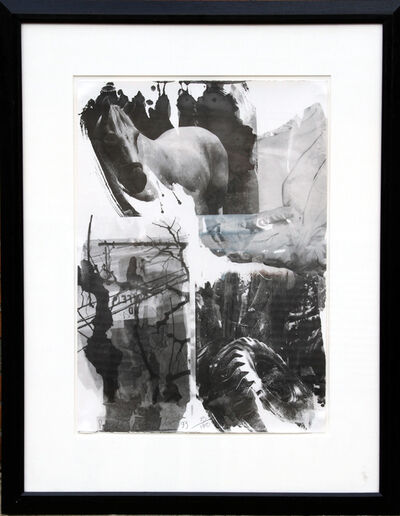 Robert Rauschenberg, 'Horse Silk from the Night Sights Series', 1993