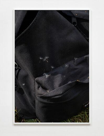 Paul Hutchinson, 'Eastpak, dandelion seeds', 2020