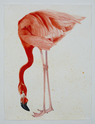 Scott Kelley, 'American Flamingo', 2017