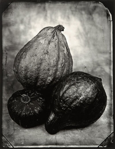 Tom Baril, 'Gourds', 2002