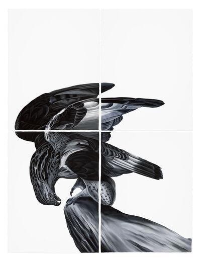 Shelley Reed, 'Hawk (after Audubon)', 2017