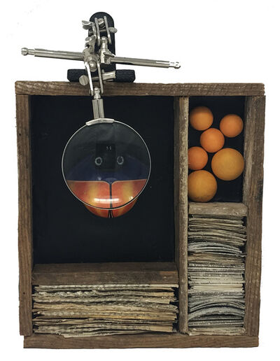 Robin Howard, 'Bug Box IV', 2020